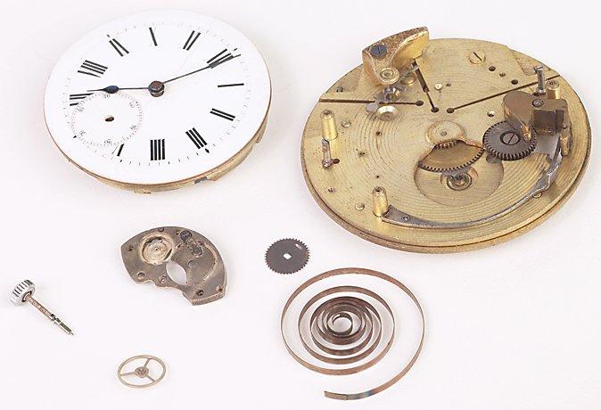 Nutmeg Time Inc. image 1