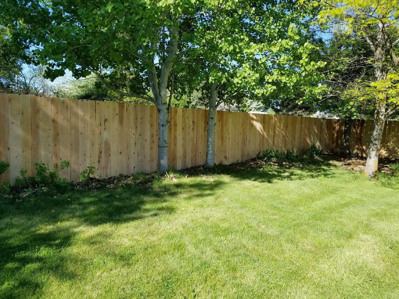 Bully Fence image 3