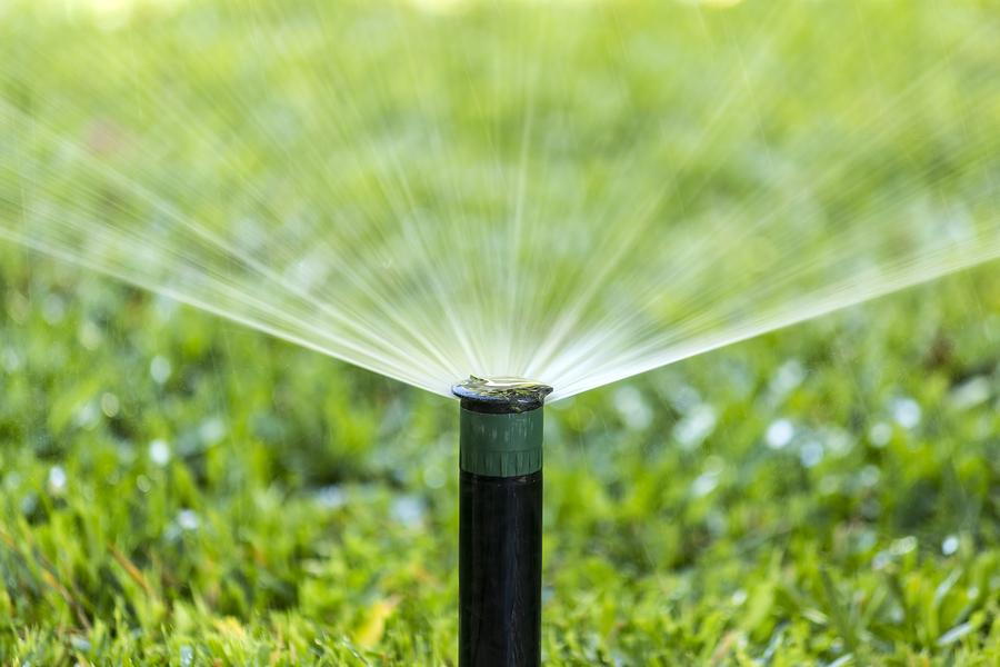 LGM Landscape and Irrigation, LLC image 2