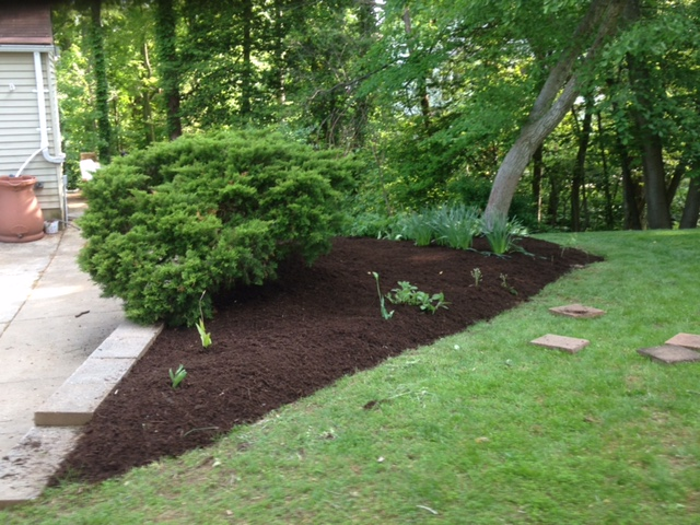 Frantum Lawncare and Landscaping LLC image 4