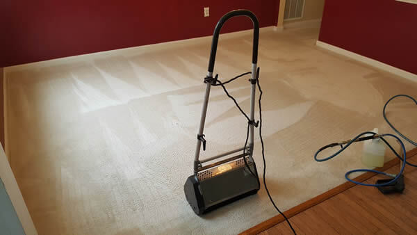 Absolute Carpet & Tile Cleaning image 10