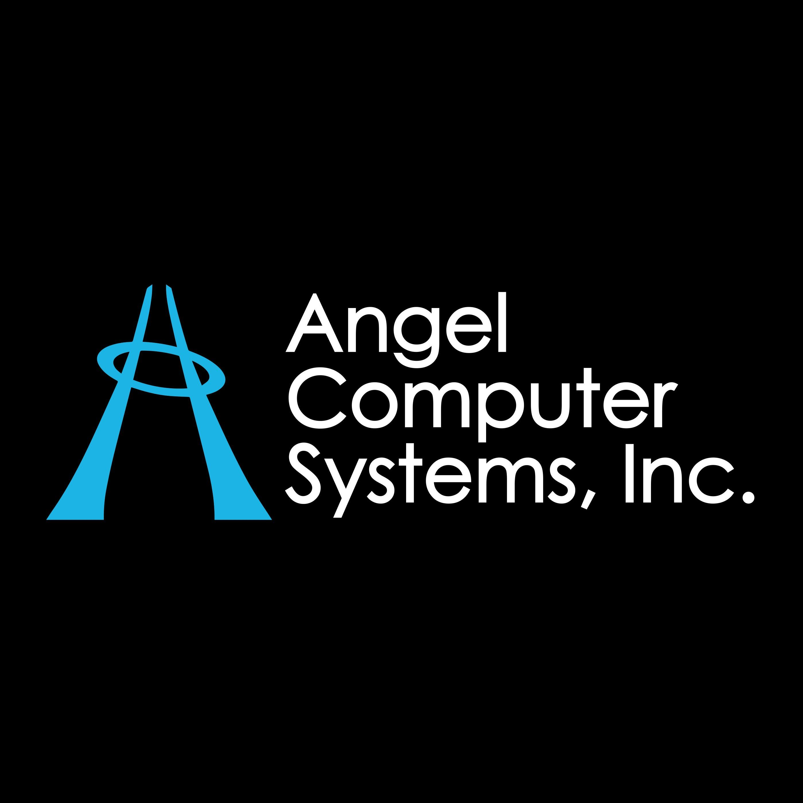 Angel Computer Systems, Inc. - Lakewood, WA - Computer Consulting Services