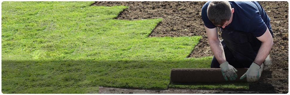 Execu-Lawn image 3