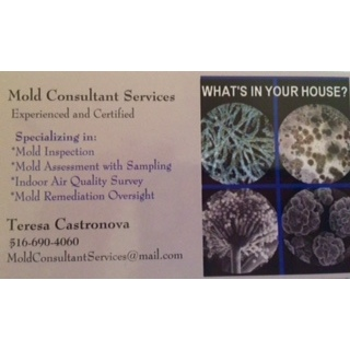 Mold Consutant Services - ad image
