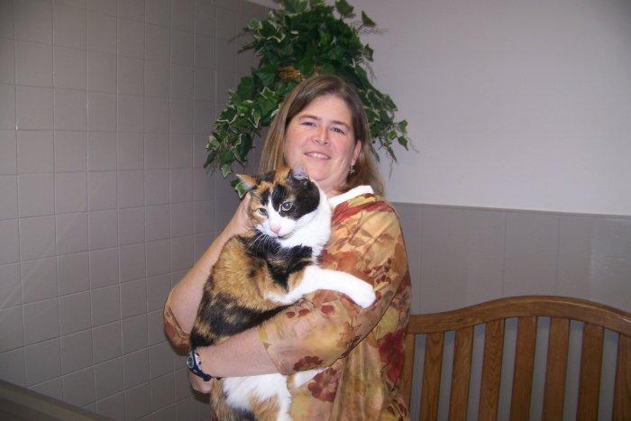 VCA Chicago North Animal Hospital image 3