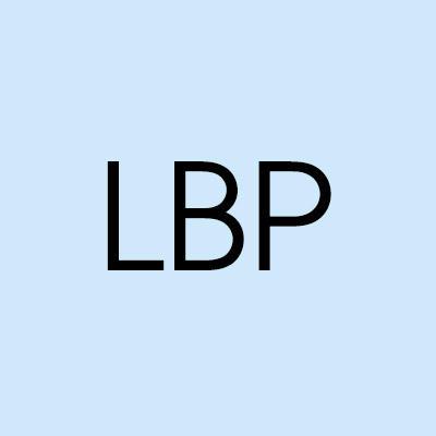 Lonnie Bravo Plumbing LLC