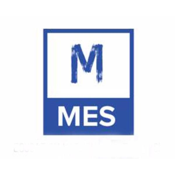 MetaBiz Educational Services image 12