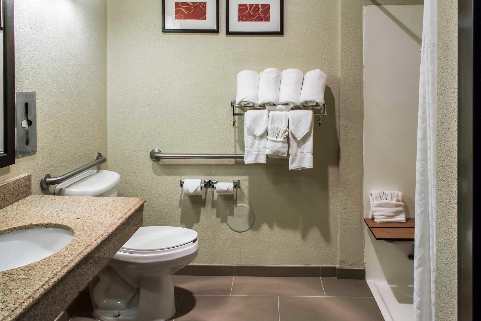 Comfort Suites Round Rock - Austin North I-35 image 21