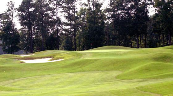 Devils Ridge Golf Club image 3