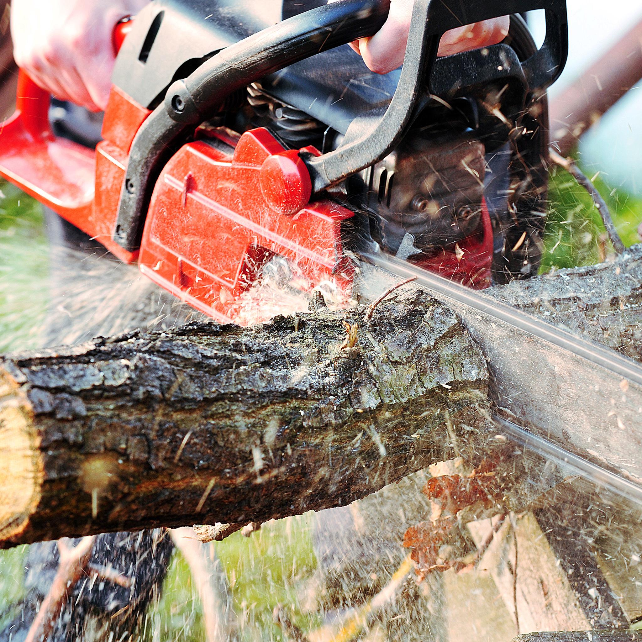 Texas Cowboy's Tree Service image 3