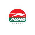 Parador Puma