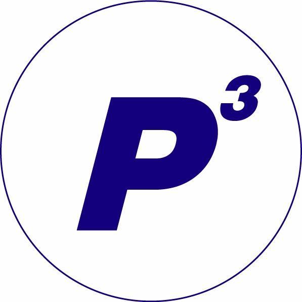 P3 - Precision Paint & Pressure Washing LLC