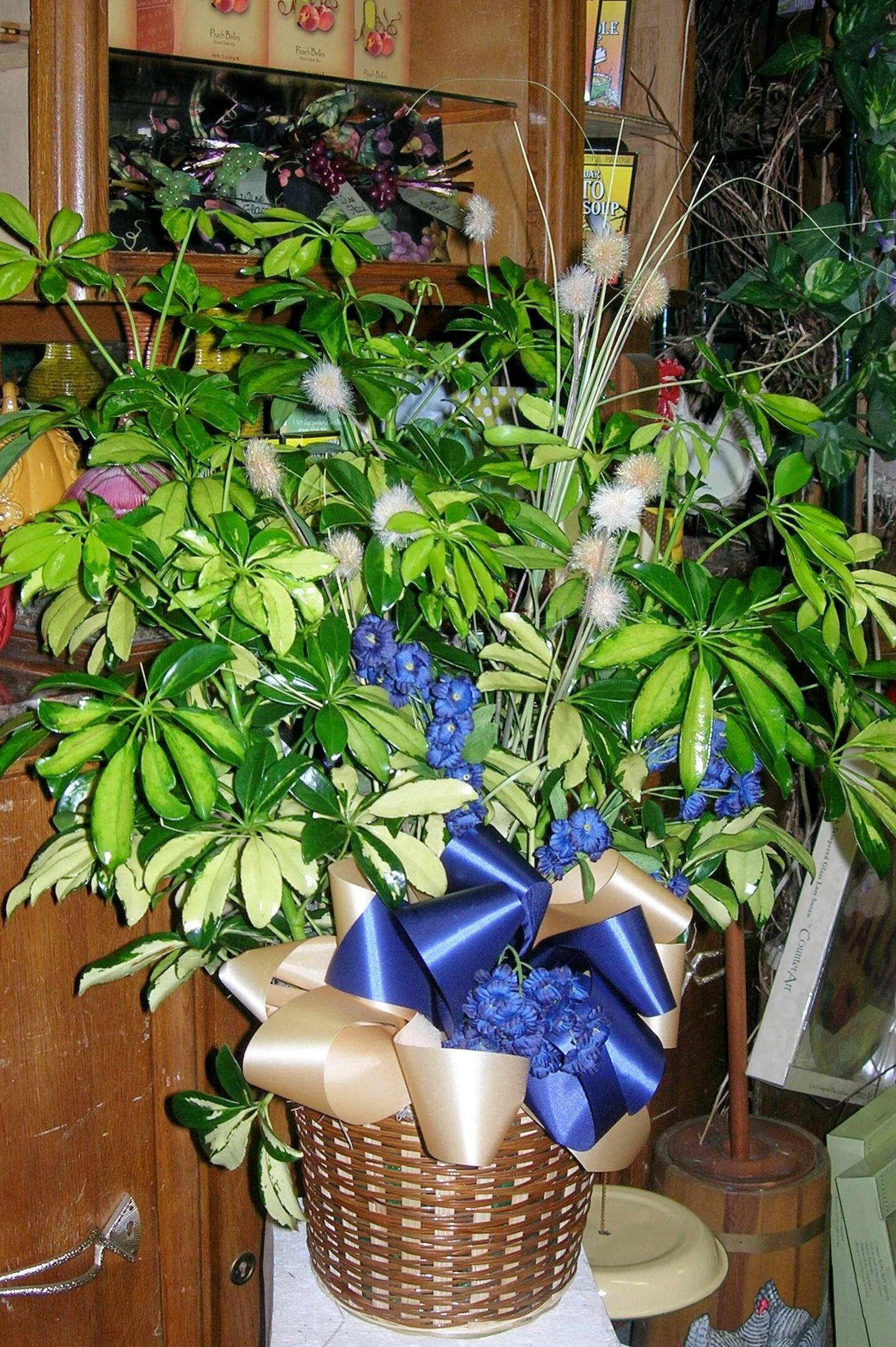 Darlene's Flower & Gift Shop image 5