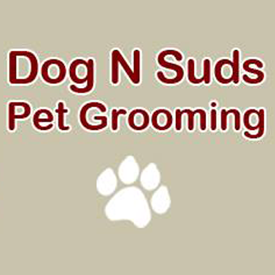Dog-N-Suds Pet Grooming image 3