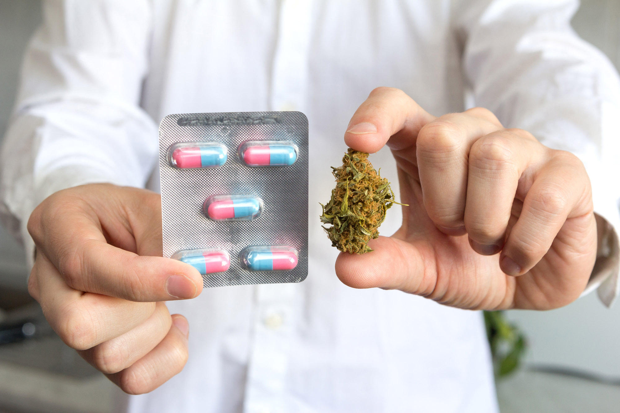 MMJ Care MD Medical Marijuana Doctor