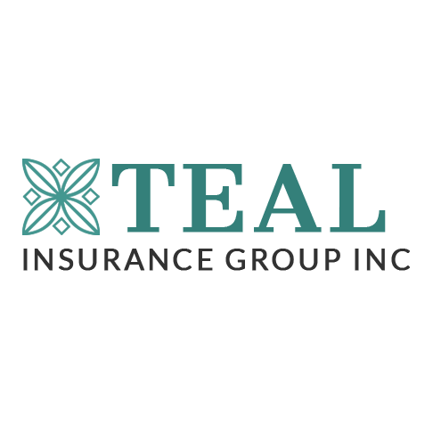 Teal Insurance Group Inc image 0