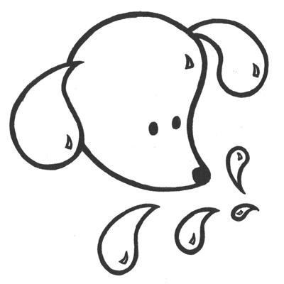 Animal Splash Grooming