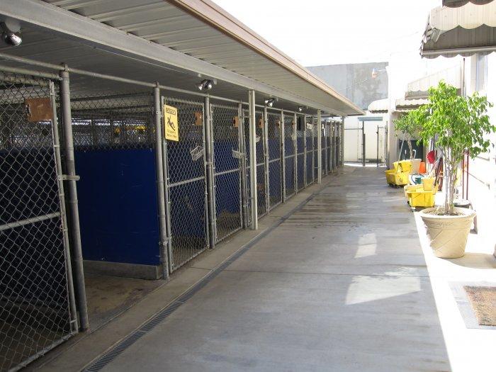 VCA La Mirada Animal Hospital image 3