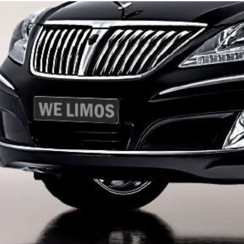WE LIMOS LLC image 5