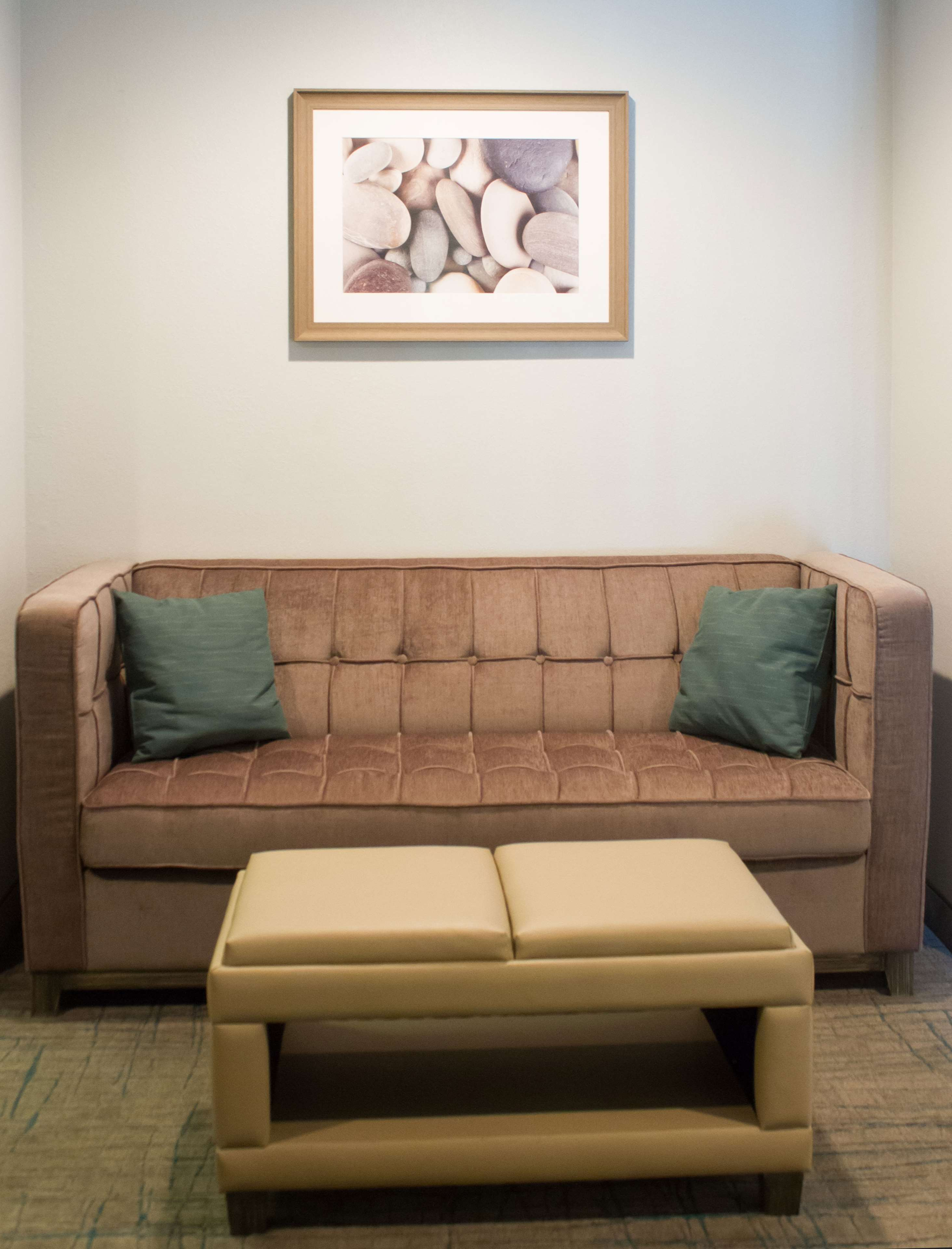 Pull Out Sofa - Guest Room