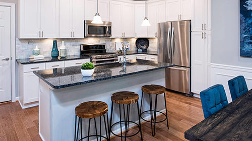 Mount Vineyard Townhomes by Pulte Homes image 4