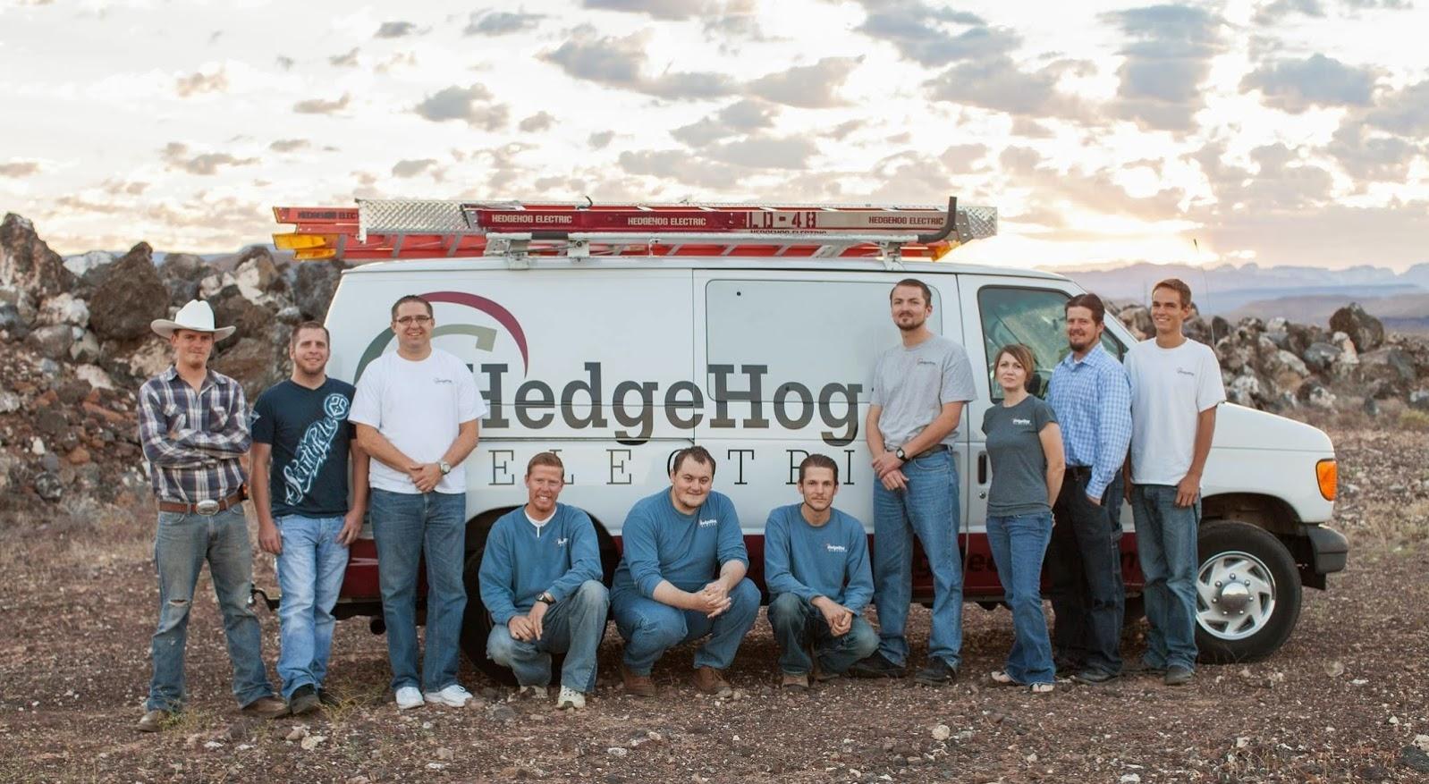 HedgeHog Electric image 0