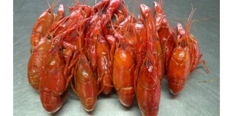Get Fresh Crawfish When in Season in Bon Secour from Billy's Seafood