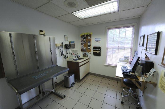 VCA Alexandria Animal Hospital image 6