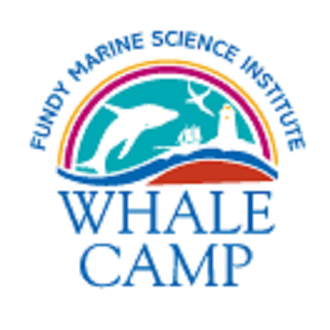 Whale Camp - Kirkwood, PA - Boat Excursions & Charters