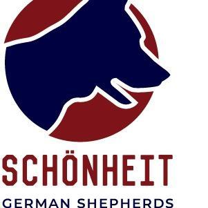 Schonheit German Shepherds