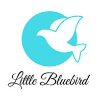 Little Bluebird image 5
