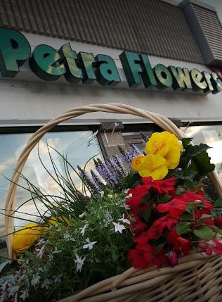 Petra Flowers image 4