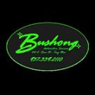 Bushong Automotive Service - Troy, OH - General Auto Repair & Service