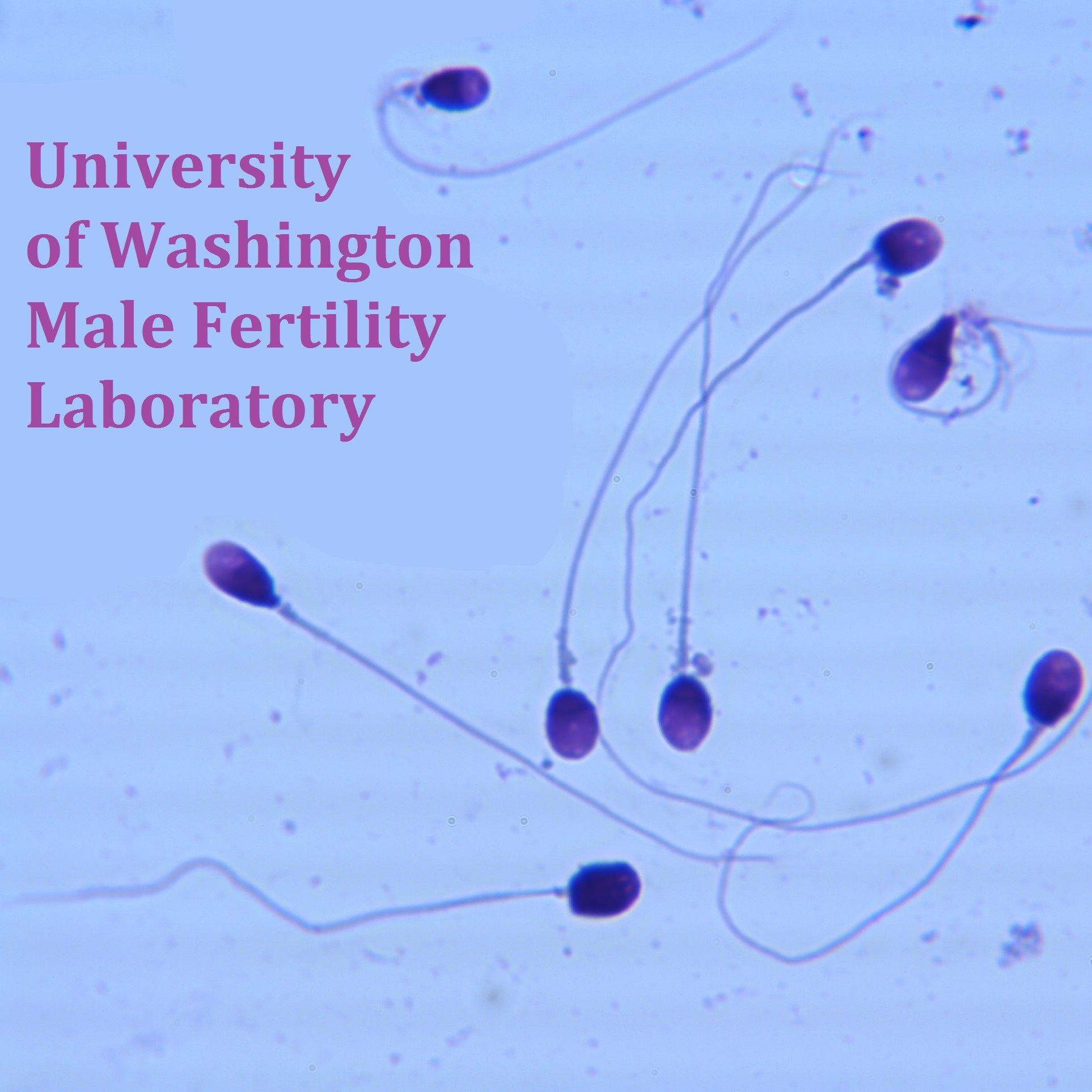 UW Male Fertility Lab