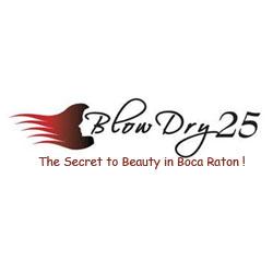 Blow Dry 25