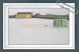 Service Roofing Co. image 2