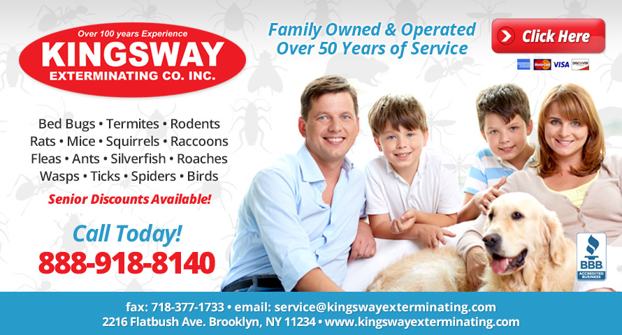 Kingsway Exterminating Co. Inc image 0