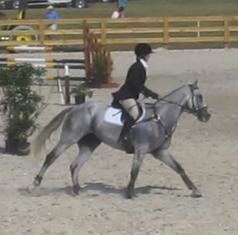 Salem Equestrian Center image 0