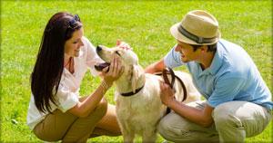 Texas Coalition for Animal Protection image 1