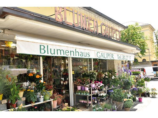 Blumenhaus Gauper