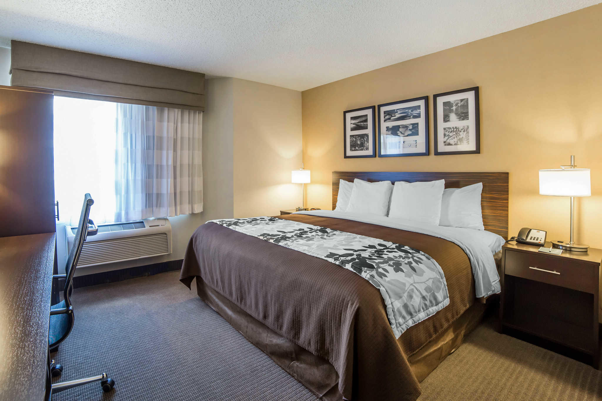 Sleep Inn Provo near University image 11