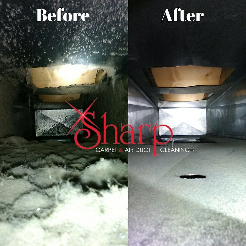 Sharp Carpet & Air Duct Cleaning image 1