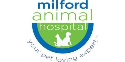 Milford Animal Hospital image 0