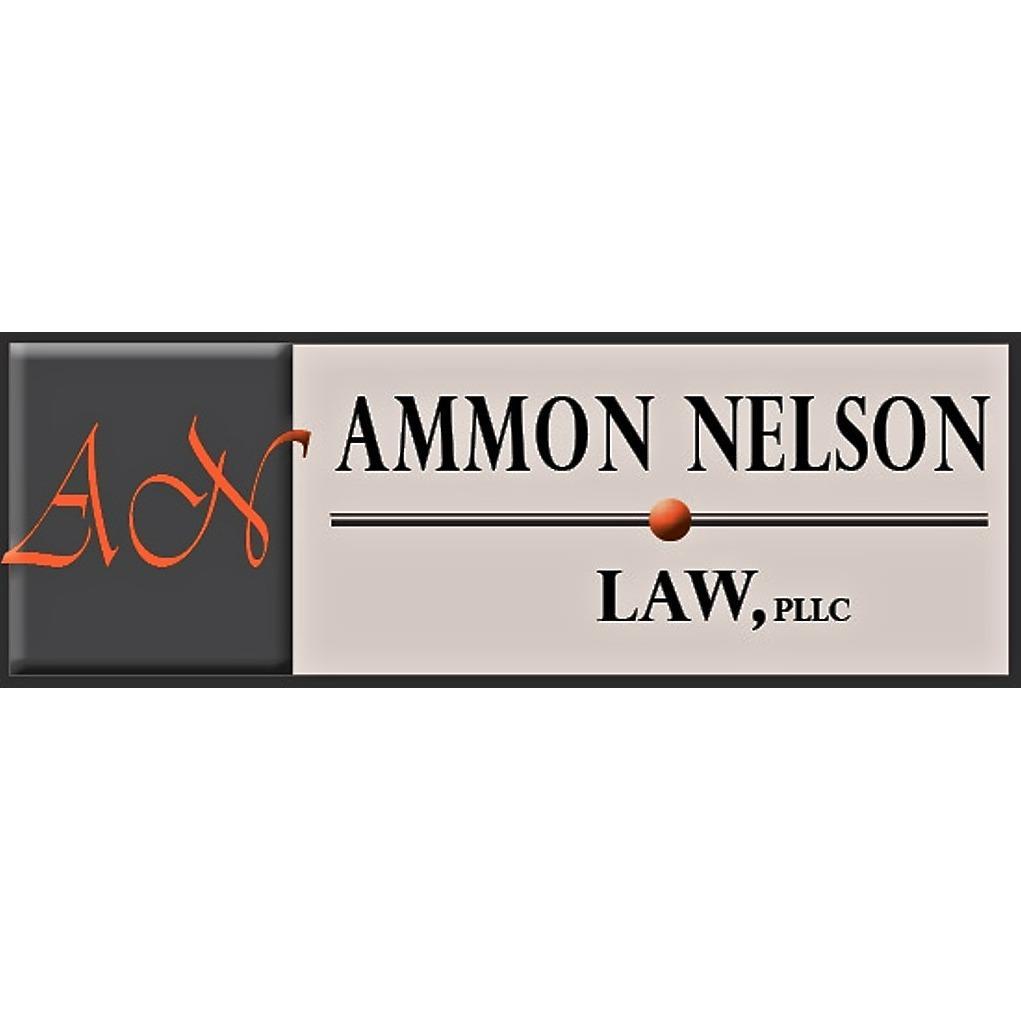 Ammon Nelson Law, PLLC