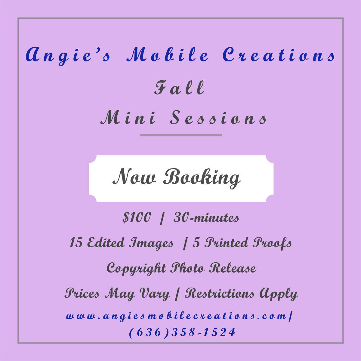 Angie's Mobile Creations image 16