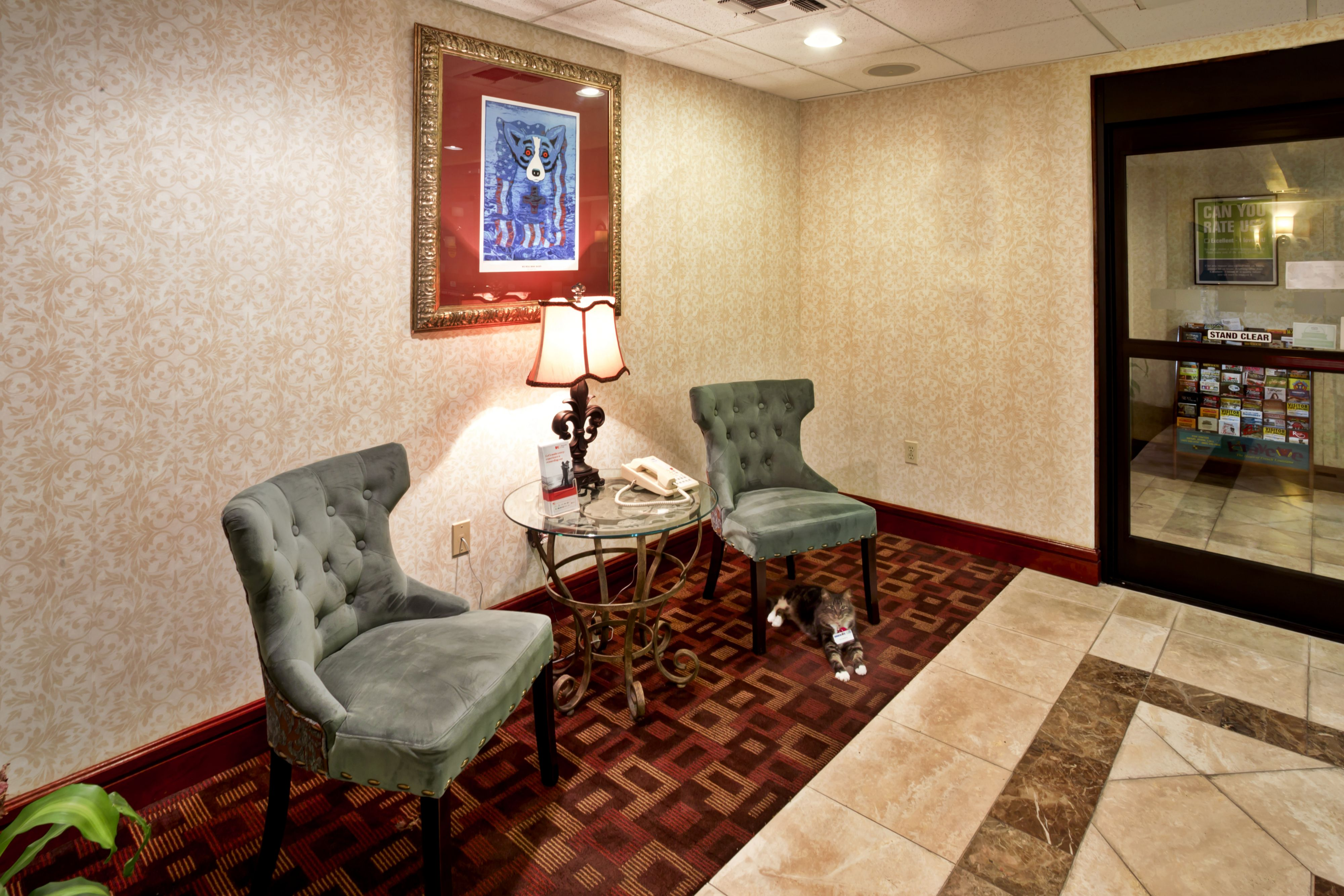 Holiday Inn Express Breaux Bridge/Henderson image 7