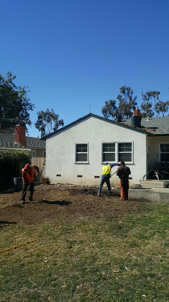 Golden State Tree Service image 1