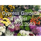 Cypress Gardens Flower Shop