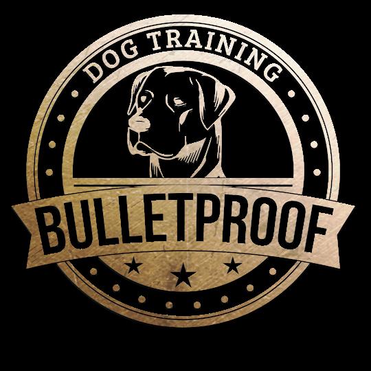Bullet Proof Dog Training San Antonio image 0