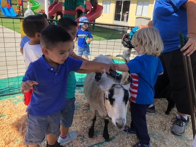 Sierra Preschool & After School image 27